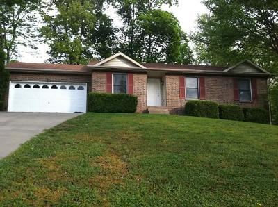 Montgomery County Single Family Home For Sale: 428 Sarah Dr