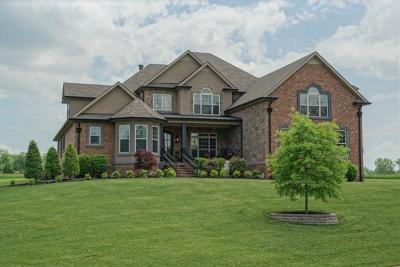 Clarksville Single Family Home For Sale: 112 Water Wood Dr