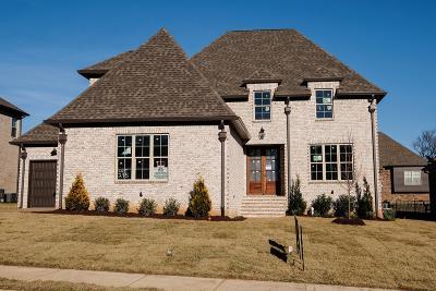 Spring Hill Single Family Home For Sale: 1911 Kittemer Lane (295)