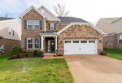 Mount Juliet Single Family Home For Sale: 714 Bench Ln