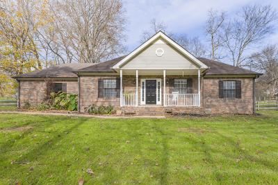 Spring Hill Single Family Home For Sale: 420 Gander Ct