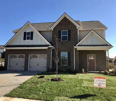 Stonebridge, Stonebridge Ph 1, 2, 3, Stonebridge Ph 11, Stonebridge Ph 17 Single Family Home For Sale: 1116 Mary's Place (621)