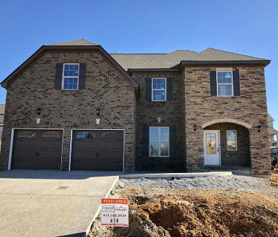 Stonebridge, Stonebridge Ph 1, 2, 3, Stonebridge Ph 11, Stonebridge Ph 17 Single Family Home For Sale: 1120 Mary's Place (619)