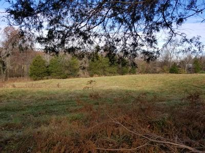 Christian County, Ky, Todd County, Ky, Montgomery County Residential Lots & Land For Sale: 691 Salem Ridge Road