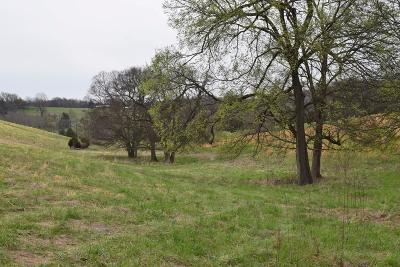 Williamson County Residential Lots & Land For Sale: 7 Arno Allisona Rd