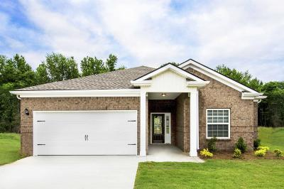 Gallatin Single Family Home For Sale: 581 Smoky Mountains Drive