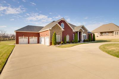 Clarksville Single Family Home For Sale: 325 Bryson Ln