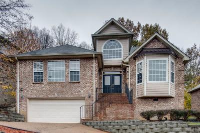 Nashville Single Family Home For Sale: 6528 Chessington Dr