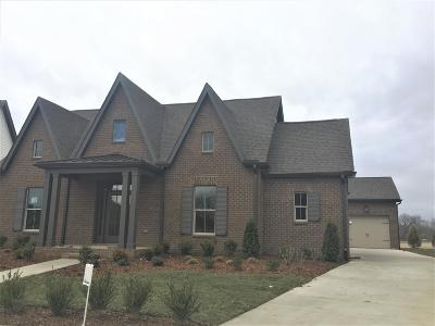 Mount Juliet Single Family Home For Sale: 432 Plowson Road #386