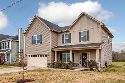 Spring Hill Single Family Home For Sale: 2097 Longhunter Chase Dr