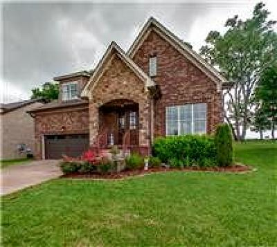 Mount Juliet Single Family Home For Sale: 766 Masters Way