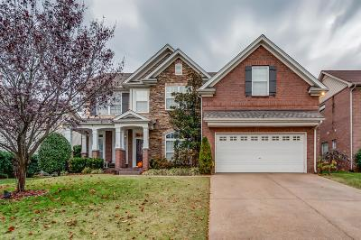 Nolensville Single Family Home For Sale: 3040 Ballenger Drive