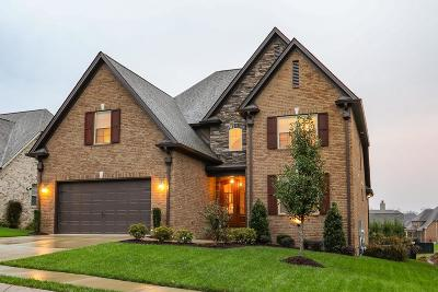 Spring Hill Single Family Home For Sale: 4164 Miles Johnson Pkwy