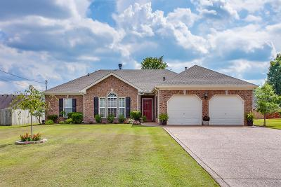 Smyrna Single Family Home For Sale: 10009 Langford Ct