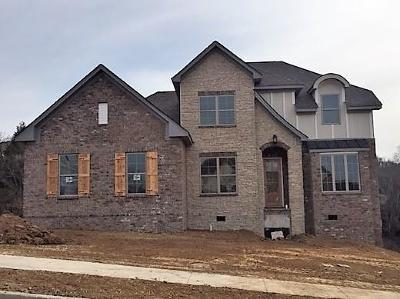 Sumner County Single Family Home For Sale: 117 Copper Creek Dr