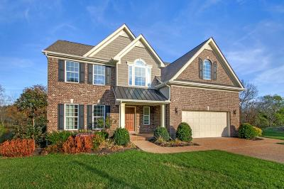 Mount Juliet Single Family Home For Sale: 199 Cobblestone Lndg