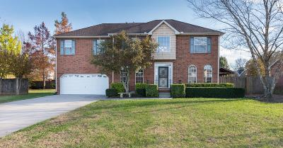 Smyrna Single Family Home For Sale: 503 Pointe Clear Dr.