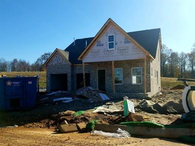 Sumner County Single Family Home For Sale: 164 Telavera Drive - Lot 12