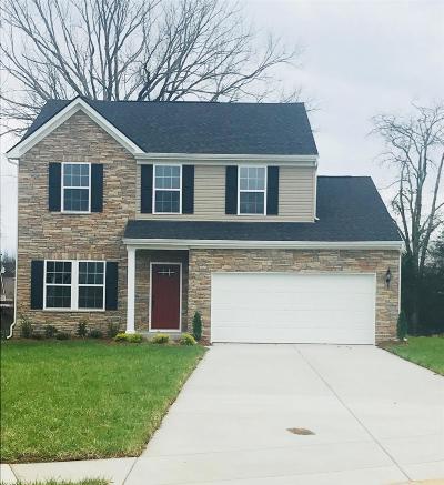 Murfreesboro Single Family Home For Sale: 2216 Pearwick Ct.