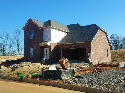 Sumner County Single Family Home For Sale: 187 Telavera Drive - Lot 18