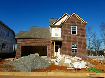 Sumner County Single Family Home For Sale: 155 Telavera Drive - Lot 290