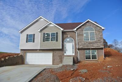 Clarksville TN Single Family Home For Sale: $227,000