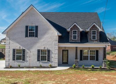 Murfreesboro Single Family Home For Sale: 1213 Rivercrest Drive