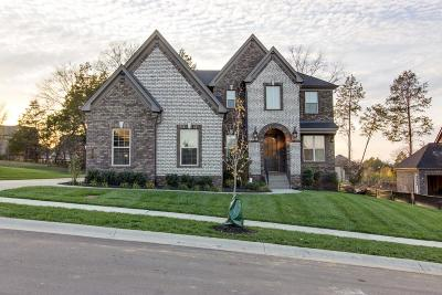 Williamson County Single Family Home For Sale: 427 Larkhill Ln