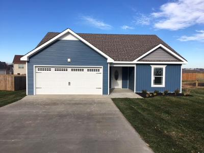 Clarksville Single Family Home For Sale: 509 Tracy Ln