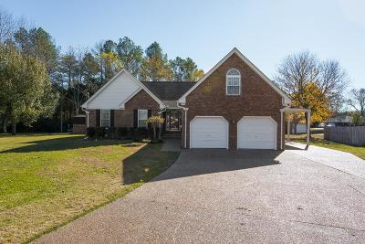 Smyrna Single Family Home Active - Showing: 108 Stella Ct