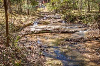 Williamson County Residential Lots & Land For Sale: Fairview Blvd