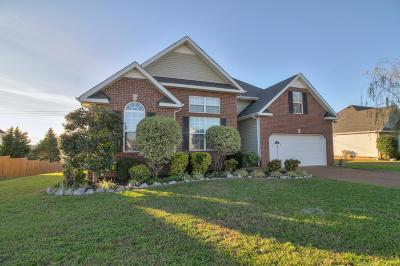 Spring Hill Single Family Home For Sale: 2943 Hearthside Dr