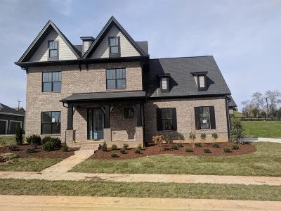 Brentwood, Franklin Single Family Home For Sale: 2013 Hornsby Drive (Lot 1146)