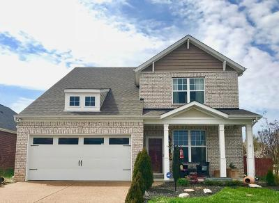 Mount Juliet Single Family Home For Sale: 400 Dunnwood Ct