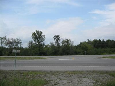 Rutherford County Residential Lots & Land For Sale: John Bragg Highway