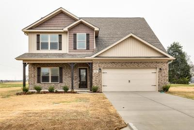 Marshall County Single Family Home Under Contract - Showing: 2507 Pinnacle Dr