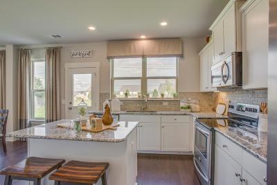 Single Family Home For Sale: 21 Rift Road Ham-K