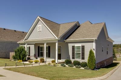 Kingston Springs Single Family Home For Sale: 109 Ellersly Way