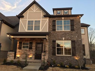 Nolensville Single Family Home For Sale: 4075 Liberton Way