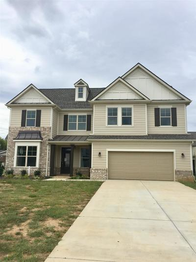 Murfreesboro, Rockvale Single Family Home For Sale: 4933 Saint Ives Dr