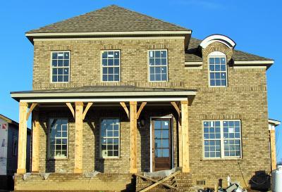 Hendersonville Single Family Home For Sale: 1548 Drakes Creek Rd Lot 8