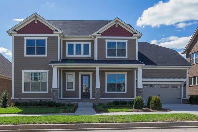 Hendersonville Single Family Home For Sale: 112 Ashington Circle Lot 62
