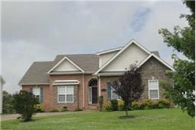 Pleasant View Single Family Home For Sale: 256 Misty Dr