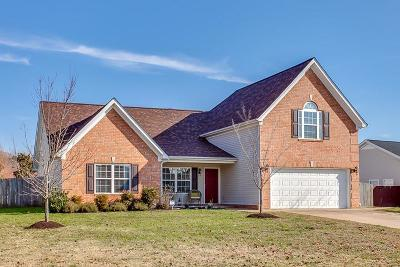Spring Hill Single Family Home For Sale: 1876 Portview Dr