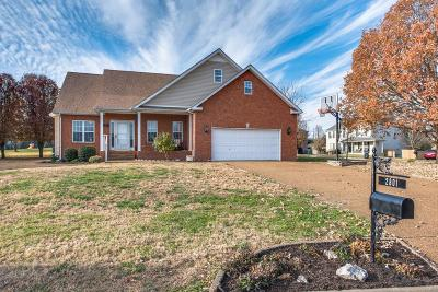 Spring Hill Single Family Home For Sale: 2801 Cattle Trace Cir