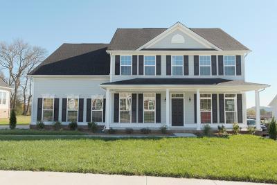 Hendersonville Single Family Home For Sale: 1016 Crutcher Station Drive
