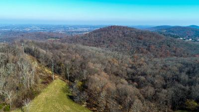 Williamson County Residential Lots & Land For Sale: 1907 Burke Hollow Rd