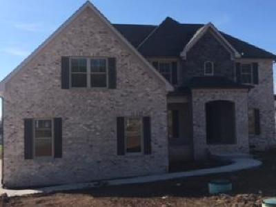 Rutherford County Single Family Home For Sale: 649 Twin View Dr