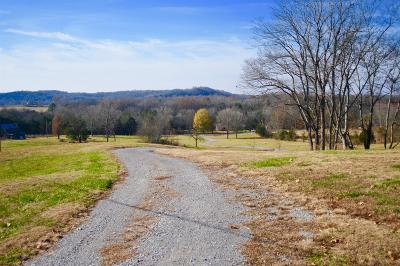 Wilson County Single Family Home For Sale: 1113 N Dickerson Chapel Rd
