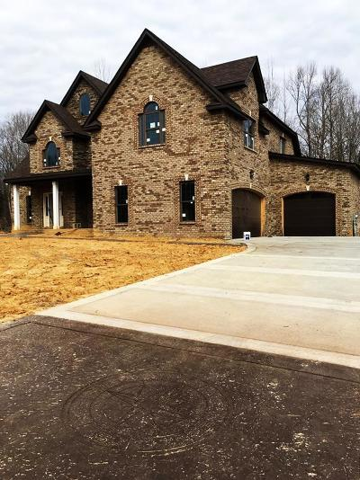 Clarksville Single Family Home For Sale: 82 Reda Drive